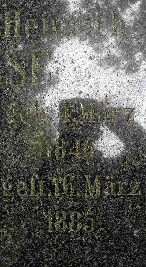 Heinrich Busse