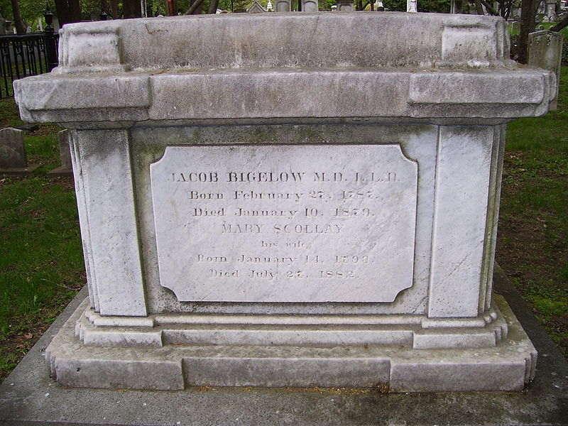 Jacob Bigelow's grave