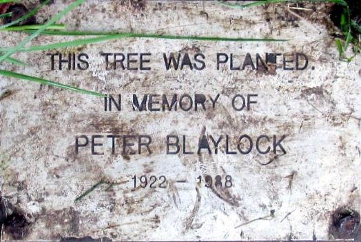 Peter Blaylock