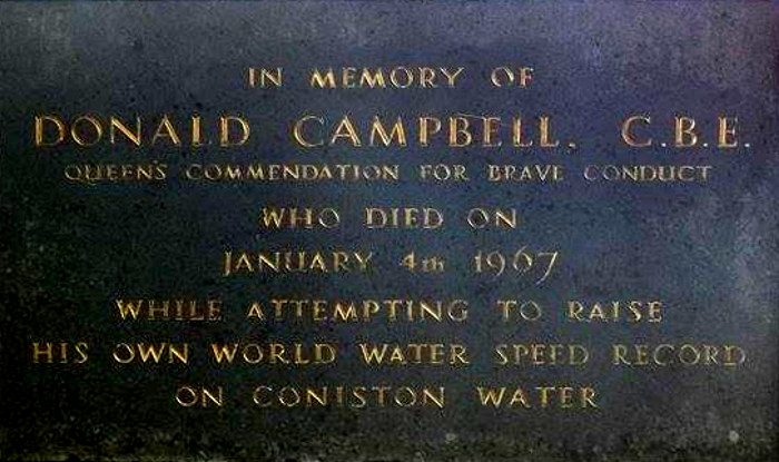 Donald Campbell, Panel