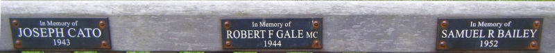 Robert F. Gale