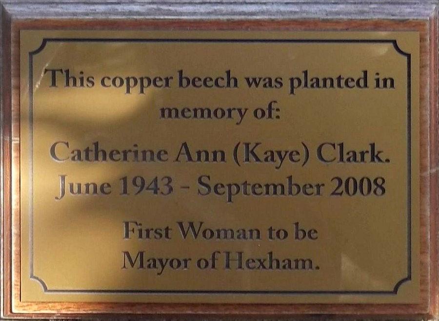 Catherine Ann Clark