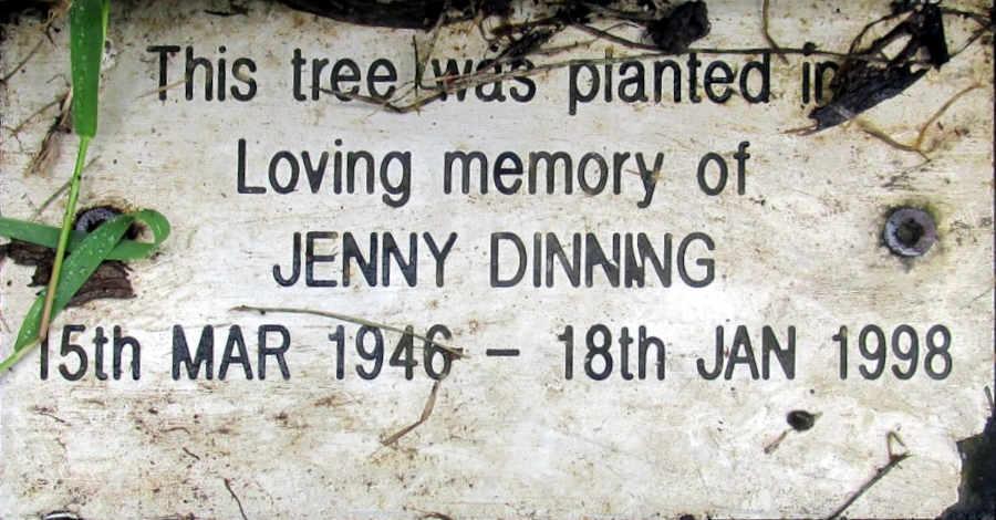 Jenny Dinning