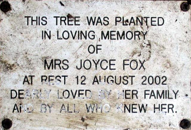 Joyce Fox