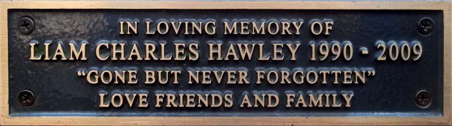 Liam Charles Hawley