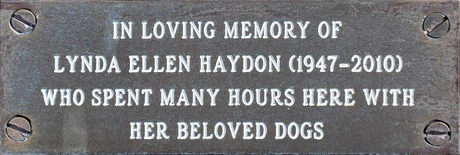 Lynda Ellen Haydon