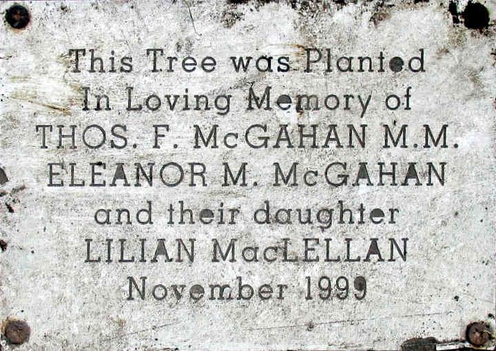 A McGahan Family