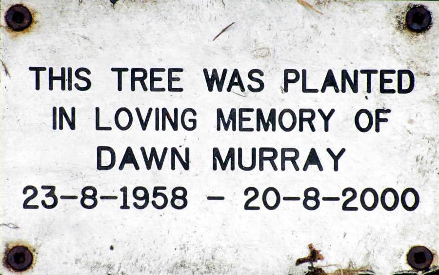 Dawn Murray