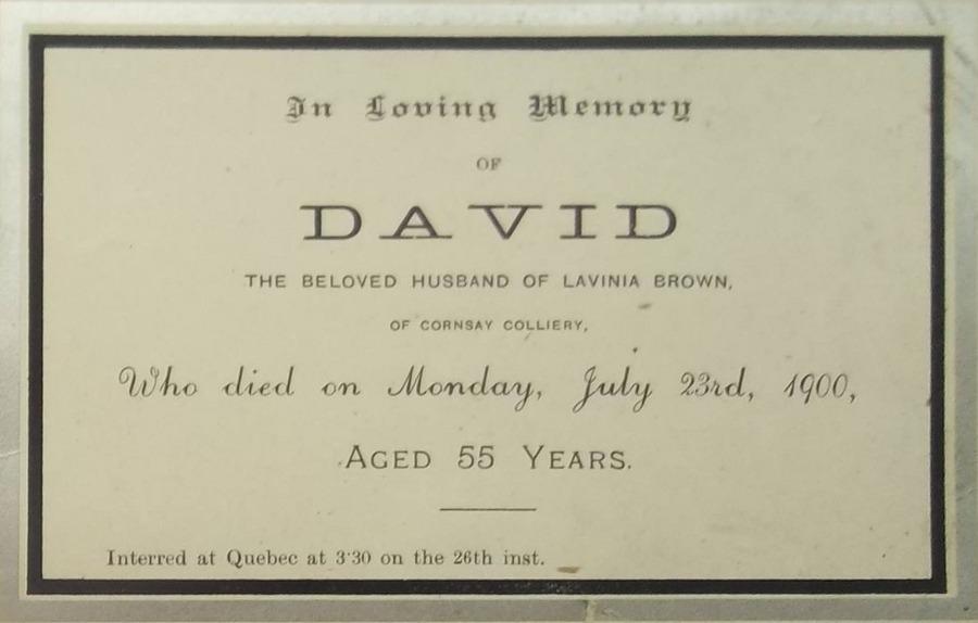 Memory Card - David Brown