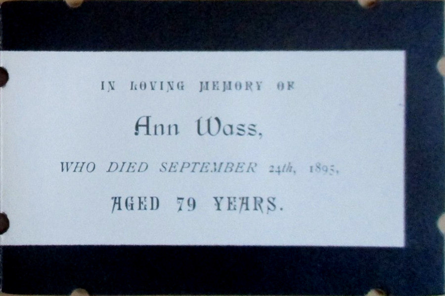 Memory Card - Ann Wass